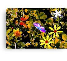 Butterflies in a flower patch Canvas Print