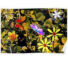 Butterflies in a flower patch Poster
