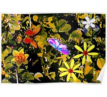 Butterflies in a flower patch Poster