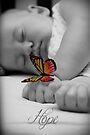 Hope Butterfly by Amy Dee