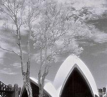Sails by AndyFeltonPix
