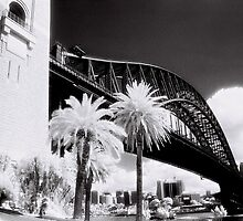 Sydney Harbour Bridge by AndyFeltonPix