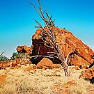 Lifeless Outback by AndyFeltonPix