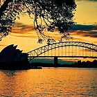 Sunset Sydney Harbour by AndyFeltonPix