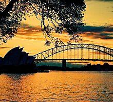 Sunset Sydney Harbour by AndyFeltonPix