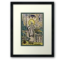 Fellowship of the Ring Dada Doll Framed Print