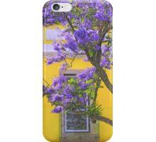 jacaranda iPhone Case/Skin