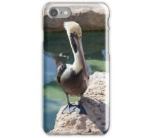 Pelican iPhone Case/Skin