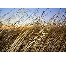 Short Peoples Sunset Photographic Print