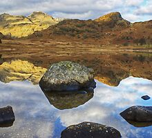 Blea Tarn,Jewel Of The Lakes by Jamie  Green