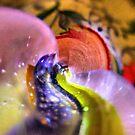 """Glass 1 by Antonello Incagnone """"incant"""""""