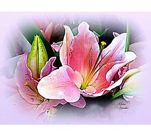 Lily Sunset Photographic Print