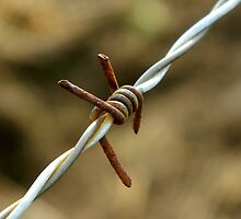 Sign of a metalhead..\m/..barbed wire looks like the sign for metal..☺☺☺☺ by jammingene