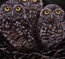3 Owls by Kate Wood