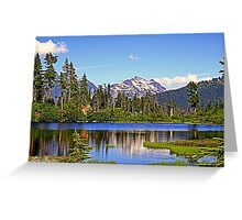 """""""Spring in the Cascades"""" Greeting Card"""
