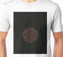 Firework Unisex T-Shirt