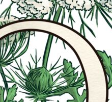 Q is for Queen Anne's Lace -- floating Sticker