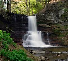 Spring Green Emerges At Sheldon Reynolds Waterfall by Gene Walls