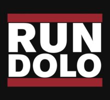 RUN DOLO by Neil K