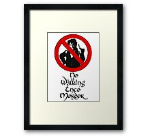 One does not simply walk into Mordor! Framed Print