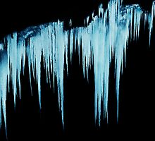 Icy Apparitions  by Laurie Minor