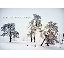 The Poetry of The Earth Photographic Print