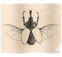 Rhinoceros Beetle Poster