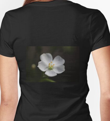 Drosera stolonifera Macro Womens Fitted T-Shirt