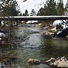 Snowy Bridge by TinyHat
