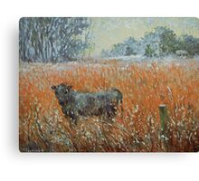 Cow in a snow blizzard Canvas Print