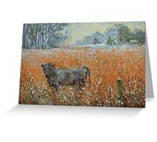 Cow in a snow blizzard Greeting Card