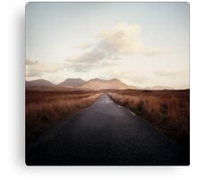 Way Canvas Print