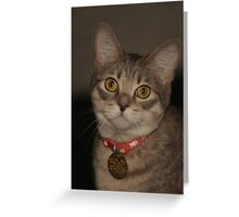 Nala~ Greeting Card