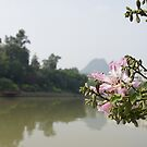 In the mists of Guilin  by Braedene