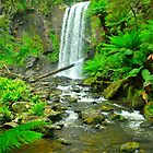 Pretty Hopetoun Falls by peasticks