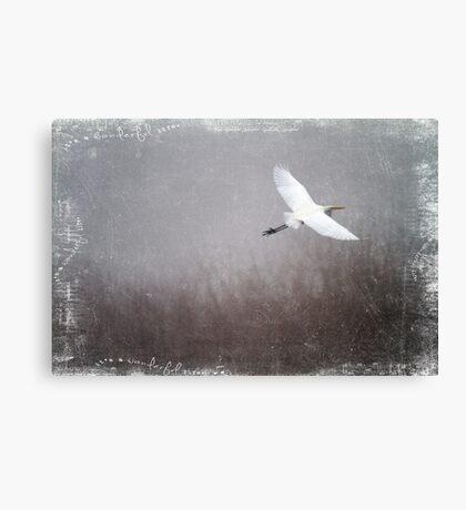 Wonderful Life Canvas Print