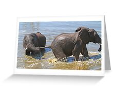 We are having such fun ! Greeting Card
