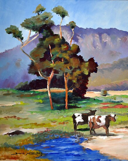 TWO COWS NSW by David McDougall
