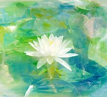 Waterlily Wildflower by MotherNature2