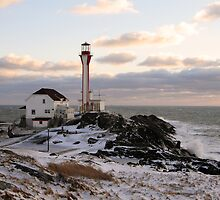 Cape Forchu Winter by Debbie  Roberts