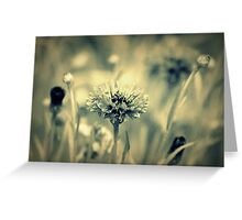 """Dreaming Fields of Flowers "" Greeting Card"