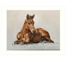Jackie's Foal Art Print