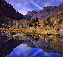 Lundy Canyon Beaver Pond by Chris Whitney