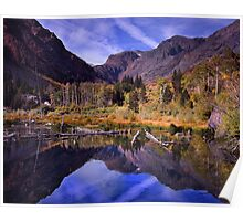 Lundy Canyon Beaver Pond Poster