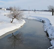 Snowy stream by mltrue