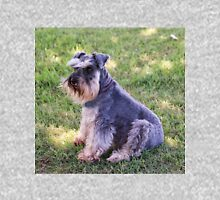Schnauzer sitting on the grass Women's Relaxed Fit T-Shirt