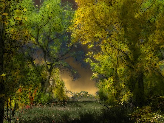 2664 by peter holme III