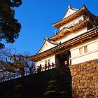 Odawara Castle Vivid Color by Fike2308