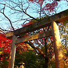 Japanese Torii Gate by Fike2308