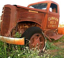 Quinalow Milk Express by gamaree L